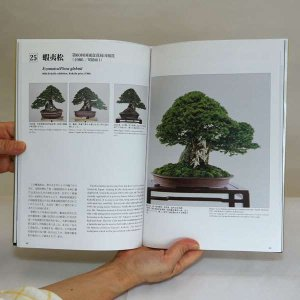 Photo3: The Bonsai Mosterpiece Collection  Vol.1