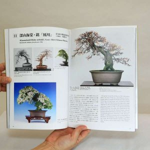 Photo2: The Bonsai Mosterpiece Collection  Vol.1